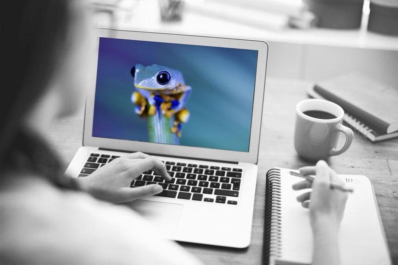Accompagnement et formation internet et réseaux sociaux S404 Solution404
